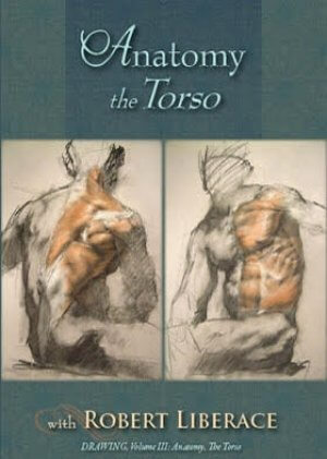 Anatomy the Torso DVD