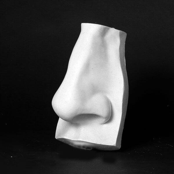Drawing Plaster Cast Nose Natural Pigments